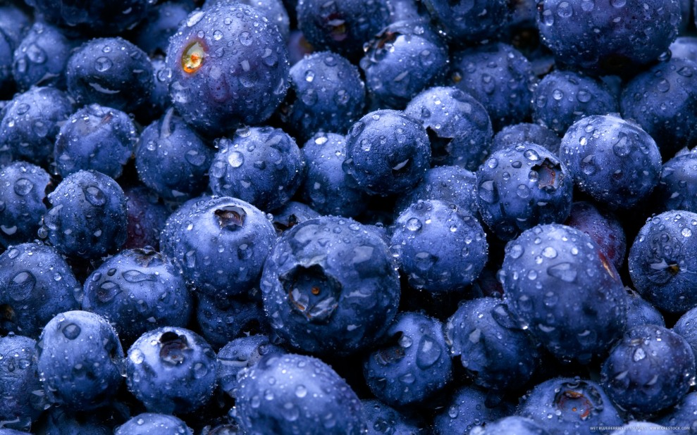 Wet Blueberries