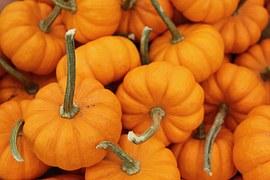 pumpkin-751252__180